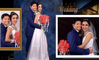 Avinash-Shalet Wedding